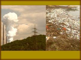 Unsere vergiftete Welt retten