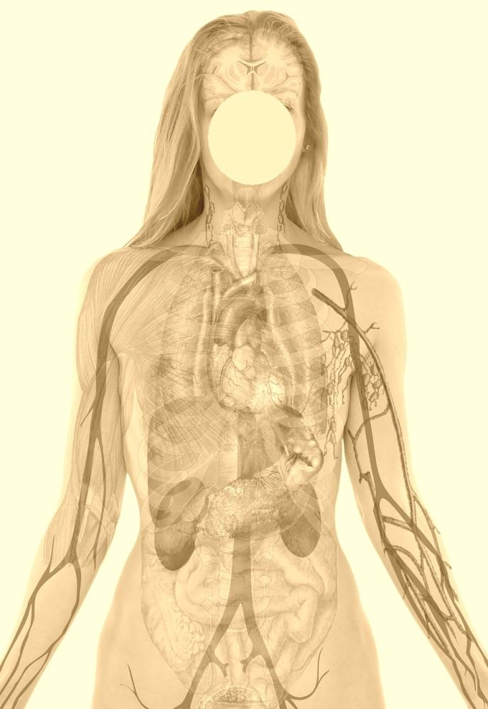 Gesundes Cholesterin dank Kupfer?