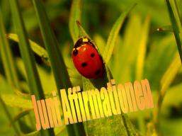 Affirmation des Tgaes Juni Affirmationen vision_neue_welt.com